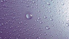 Opuszcza woda który daje uczuciu świeżość obraz stock
