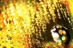 opuszcza złoto Fotografia Stock
