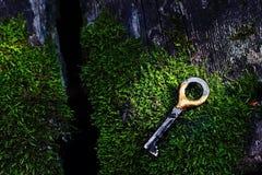 Opuszczający klucz obraz stock