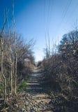 opuszczona linia kolejowa Zdjęcie Royalty Free