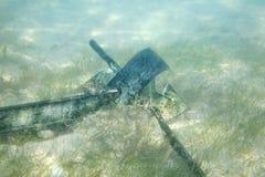 Opuszczona statek kotwica na piaskowatym dnie morze obraz royalty free