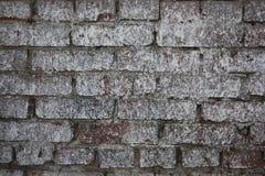 opuszczony budynek Fotografia dla twój projekta Obrazy Royalty Free