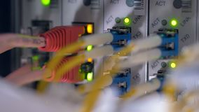 Opvlammende LEIDENE lichten bij werkende gegevensservers 4K stock videobeelden