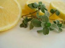 Oréganos e limão Fotos de Stock Royalty Free
