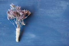 Oréganos secados Imagem de Stock