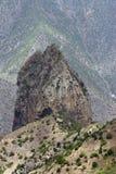 Orörd natur på La Gomera arkivfoto