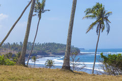 Orörd sandig strand Arkivfoto