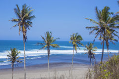 Orörd sandig strand Royaltyfria Foton