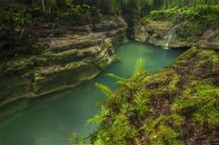 Orörd skönhet av naturen Fotografering för Bildbyråer