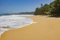 Orörd tropisk strand i Bocas del Toro Panama Arkivbilder