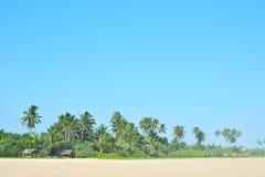 Orörd tropisk strand i Sri Lanka Härlig strand med inget, palmträd och guld- sand Blåtthav, Sky & moln Royaltyfria Foton