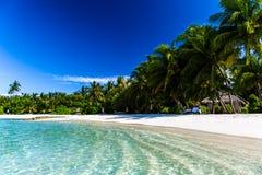 Orörd tropisk strand, Maldiverna strand arkivfoton