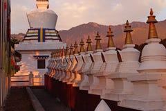 Oração tibetana india templed Imagem de Stock