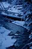 Ora blu della montagna della cascata: Rami ed acqua corrente affollati fotografia stock libera da diritti
