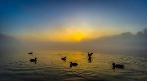 Ora di punta nel lago Fotografie Stock Libere da Diritti