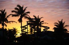 Ora dorata di tramonto con le palme ed il parco acquatico fotografia stock
