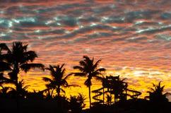Ora dorata di tramonto con le palme ed il parco acquatico immagini stock libere da diritti