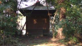 Oracle στο πάρκο στο Τόκιο απόθεμα βίντεο