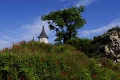Oradea, Roemenië - 18 kunnen 2016, Citadel Royalty-vrije Stock Foto