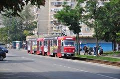 Oradea, Romania Immagini Stock Libere da Diritti