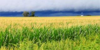 Orage au-dessus de champ de maïs de l'Illinois Images stock