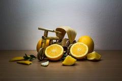 Orage och cykel Fotografering för Bildbyråer