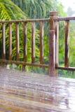 Orage tropical Image libre de droits