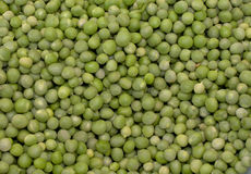 Oragnic Peas Royalty Free Stock Photography