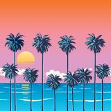 The oragzhevy sky on the beach with palm trees royalty free illustration