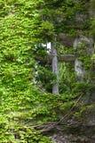 Orakat med vinrankan fönstret i slotten Montresor Royaltyfria Foton