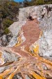 Orakei Korako kolor żółty i menchie fotografia royalty free
