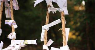 Orakels bij Hakone-heiligdom in Shizuoka Japan stock videobeelden