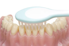 Oral hygiene. Beautiful teeth and toothbrush doing the oral hygiene Stock Photos