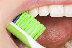 Oral hygiene. Perfect oral hygiene with the correct use of an tooth brush Royalty Free Stock Photo