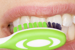 Oral hygiene. Perfect oral hygiene with the correct use of an tooth brush Stock Photography