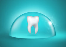 Oral hygiene. Molar tooth under a bell jar on blue background Stock Photo