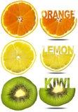 Orance Lemon Kiwi Slices Royalty Free Stock Photo