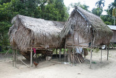 Orang asli house malasia Royalty Free Stock Photos
