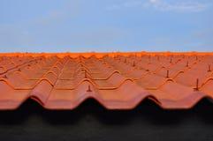 Orang-Utan-Dachplatten Stockfoto
