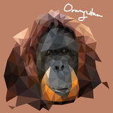 Orang Utan Illustration in Mosaic Style. A vector illustration of Orang Utan Illustration in Mosaic Style Royalty Free Stock Photography