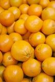 orange Royaltyfria Bilder