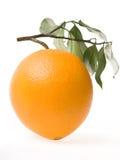 Orange. Isolated On White Blackgroud Royalty Free Stock Photo