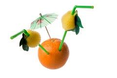 Orange. On white background, photo, umbrella,tubule Royalty Free Stock Image