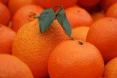 Orange. S, fresh fruit shops in the market Royalty Free Stock Images