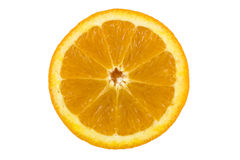 Orange Royalty Free Stock Photography