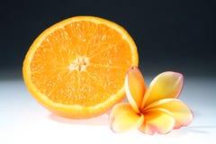 Orange. The orange with some lan thom flowers Royalty Free Stock Images