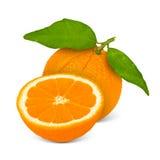 Orange Stock Images