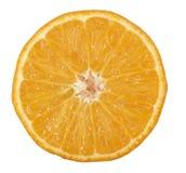 Orange lizenzfreie stockbilder