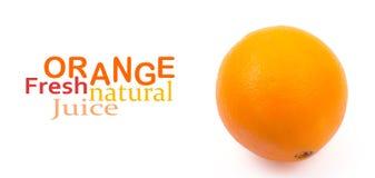 Orange. On white background Stock Images