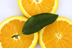 Orange. Fruit slices arranged and garnished with a citrus leaf Royalty Free Stock Photos